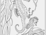 Realistic Animal Coloring Pages to Print Realistic Seahorse Coloring Pages for Adult