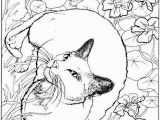 Realistic Cat Coloring Pages 18fresh Realistic Animal Coloring Pages Clip Arts & Coloring Pages