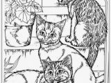 Realistic Cat Coloring Pages 26 Realistic Animal Coloring Pages