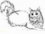 Realistic Cat Coloring Pages Image Cat Coloring Pages top 20 Free Printable Cat