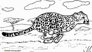 Realistic Cheetah Coloring Pages Cheetah Coloring Pages Lovely Best 12 Luxury Free Printable