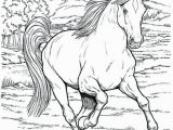 Realistic Coloring Pages Of Animals Realistic Animals Drawing at Getdrawings