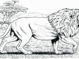Realistic Coloring Pages Of Animals Realistic Coloring Pages Animals 11