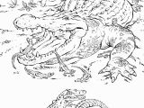 Realistic Coloring Pages Of Animals Realistic Coloring Pages Animals Coloring Pages
