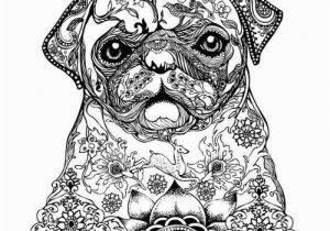 Realistic Cute Animal Coloring Pages 12 Free Printable Adult Coloring Pages for Summer