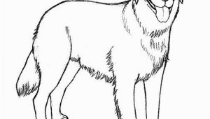 Realistic Golden Retriever Dog Coloring Pages Realistic Golden Retriever Coloring Pages