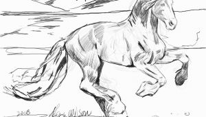 Realistic Horse Coloring Pages for Adults Realistic Horse Coloring Pages for Adults Coloring Pages
