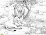 Realistic Lion Coloring Pages Lion Free Clipart 110