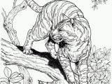 Realistic Lion Coloring Pages New Coloring Pages Realistic Dog to Print and Color Free