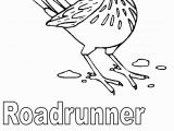 Roadrunner Coloring Pages Printable Free State Symbols Coloring Pages Download Free Clip Art