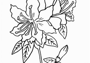 Rose Bouquet Coloring Pages Rhododendron Flower Coloring Page Lots Of Flower Coloring