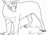 Rottweiler Puppies Coloring Pages Rottweiler Puppy Coloring Page