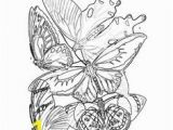 Ryu Coloring Pages 43 Best Bhl Coloring Pages Images On Pinterest