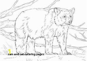 Sam I Am Coloring Page Sam and Cat Coloring Pages Luxury Witch Coloring Page Inspirational