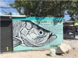 Scarface Mural Photo1 Picture Of Robbie S Of islamorada islamorada Tripadvisor