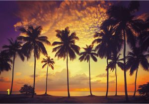 Scarface Sunset Wall Mural Scarface Wallpaper Palm Trees Wallpapersafari