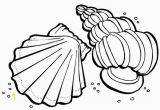 Sea Shells Coloring Pages Sea Animals Coloring Pages