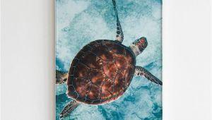 Sea Turtle Wall Mural Turtle Print Turtle Wall Art Ocean Print Oacen Wall Art