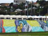 Sea Walls Murals for Oceans Napier Street Art