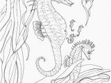 Seahorse Coloring Pages for Adults Adult Seahorse and Seahorse Babies Coloring Page