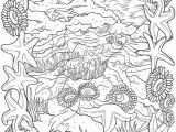 Seashore Coloring Pages Seashell Coloring Pages Bliss Seashore Coloring Book Your Passport