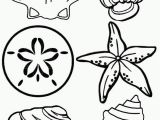 Shell Coloring Pages Shell Coloring Pages Unique 22 Luxury Shell Coloring Pages Ideas