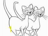 Siamese Cat Coloring Pages 263 Best Cat Burglar Images