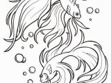 Siamese Fighting Fish Coloring Pages Betta Fish Coloring Pages Art Drawing Templates