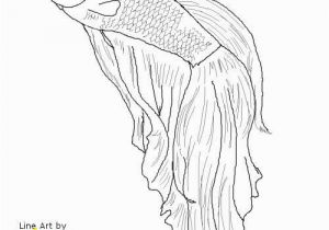 Siamese Fighting Fish Coloring Pages Betta Fish I M Gonna Try to Draw This for My Friend She is A Betta
