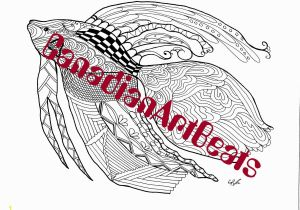 Siamese Fighting Fish Coloring Pages Coloring Page Downloadable Printable Siamese Fighting Fish Art by