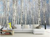 Silver Birch Wall Mural Discount Birch Wallpaper