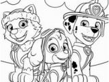Skye Paw Patrol Printable Coloring Pages 35 Best Paw Patrol Images On Pinterest