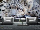 Snow Leopard Wall Mural Wandtattoo Leopard
