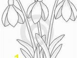 Snowdrop Coloring Pages 143 Best Watercolor Painting Images On Pinterest In 2018