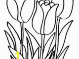 Snowdrop Coloring Pages 46 Best Flowers and Plants Images On Pinterest
