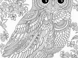 Snowy Owl Coloring Page Coloriage Zen