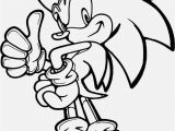 Sonic Silver and Shadow Coloring Pages Printable Coloring Pages sonic the Hedgehog Coloring Book
