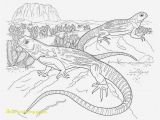 Sonoran Desert Coloring Pages sonoran Desert Animal Coloring Pages Fascinating Desert Coloring
