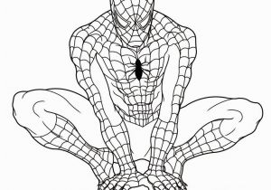 Spiderman Coloring Pages to Print Free Printable Spiderman Coloring Pages for Kids with
