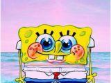 Spongebob Wall Murals 48 Best Wallpaper Spongebob Images