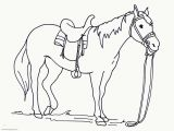 Spotted Horse Coloring Pages Big Printable Coloring Pages Horses Coloring Pages for All Ages