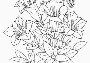 Spring Flowers Coloring Book Pages Printable Coloring Pages Spring Frog Coloring Pages Fresh Frog