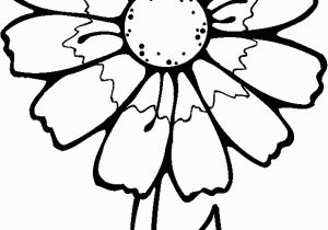 Spring Flowers Coloring Pages for Adults Printable Flowers to Color Flowers Coloring Pages Kids