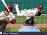 St Louis Cardinals Coloring Pages Lohse Stock S & Lohse Stock Page 3 Alamy