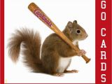 St Louis Cardinals Coloring Pages St Louis Cardinals Rally Squirrel