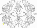 Stag Beetle Coloring Page Printable Adult Coloring Page Mandala Insects Moths Beetles