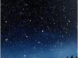 Starry Night Sky Murals 11 Best Night Sky Images