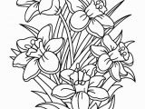 Summer Flower Coloring Pages Daffodils