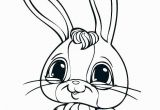 Sunny Bunnies Coloring Pages 648 Bunnies Free Clipart 4