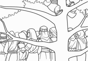 Sycamore Tree Coloring Page Zacchaeus Climbs A Sycamore Tree Sunday School